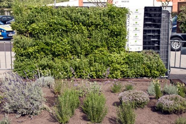 Jardins verticals per fer un hort d'aromàtiques a casa
